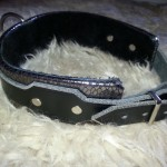 Silver Collar 2