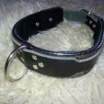 Silver Collar 1